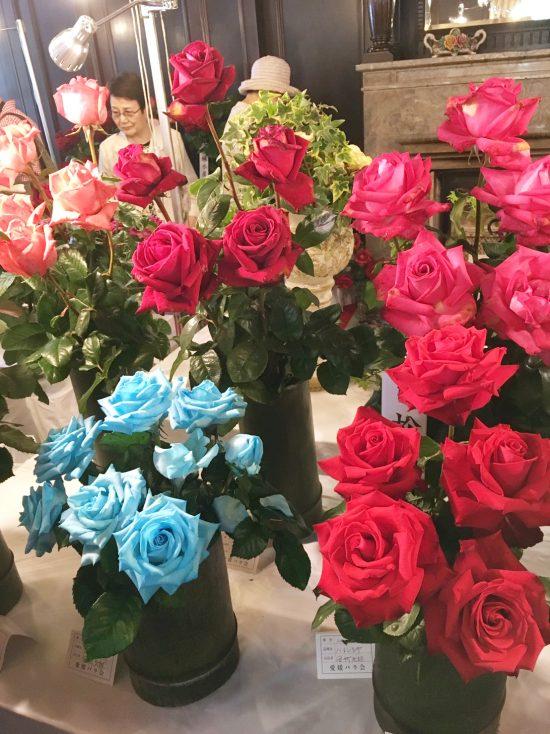染料で染めた青いバラも