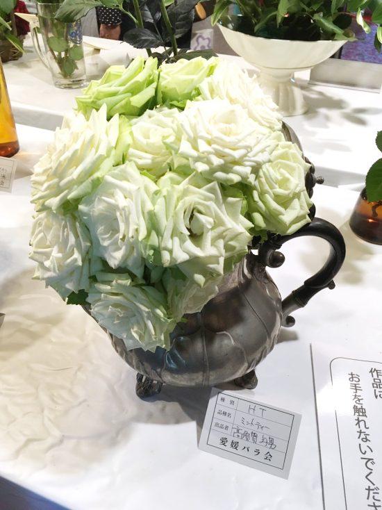 ティーポットに活けられたバラの品種は「ミントティー」