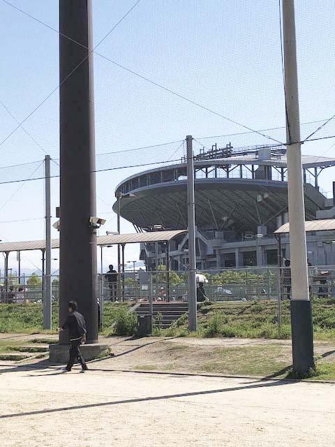 近くには我が聖地「坊っちゃんスタジアム」が見えます