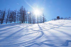 寒いけど熱い! スキー&スケート特集