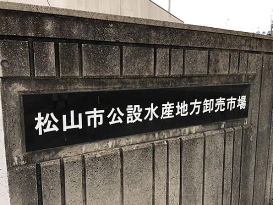 三津のある松山市水産市場!朝からスゴイ賑わいです!