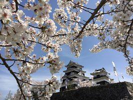春のおでかけは大洲城へ!